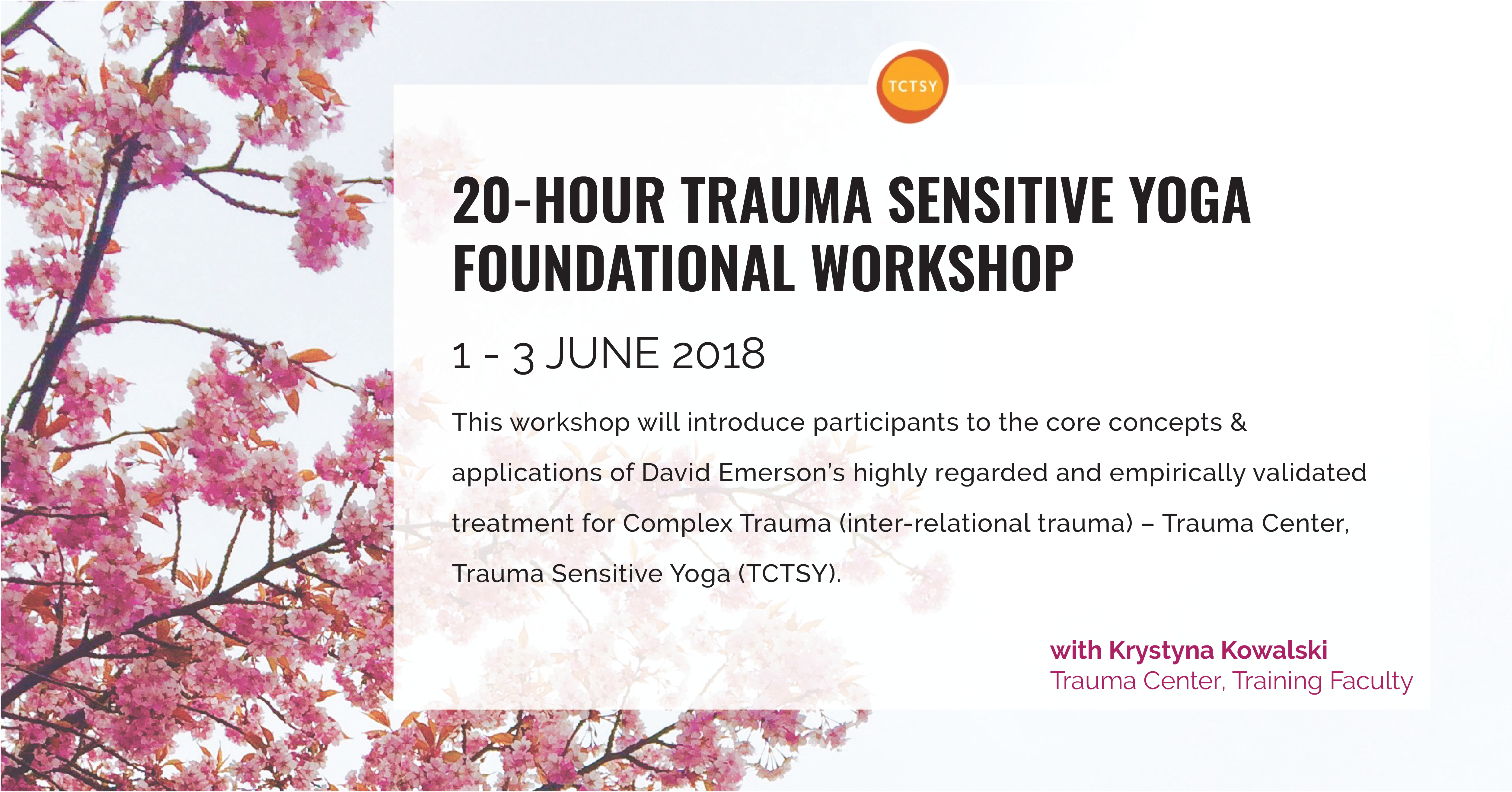 20 Hour Trauma Sensitive Yoga Foundational